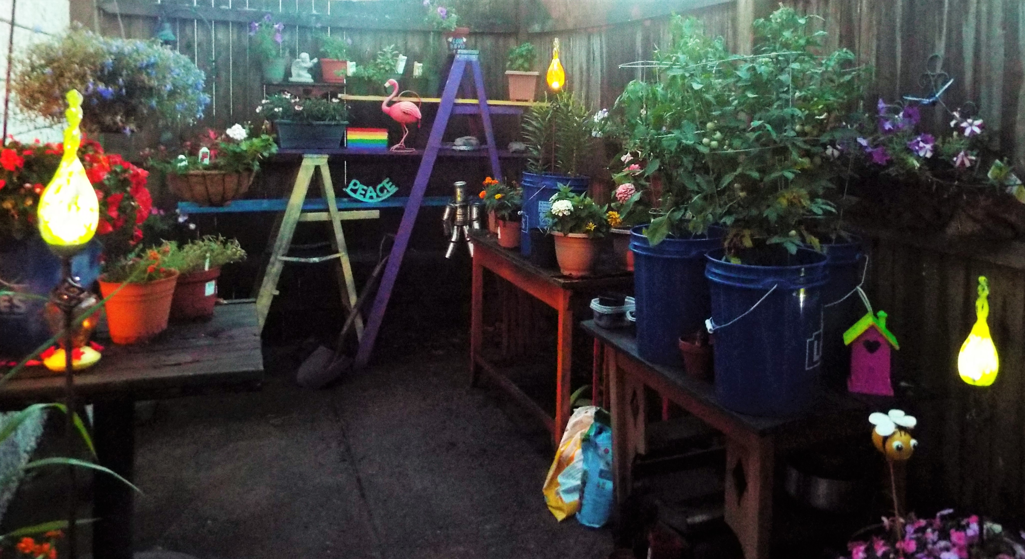 ... Blown Glass Solar Garden Lights. (Thank You Sharon U0026 Warren!) DSCF3769  (2)